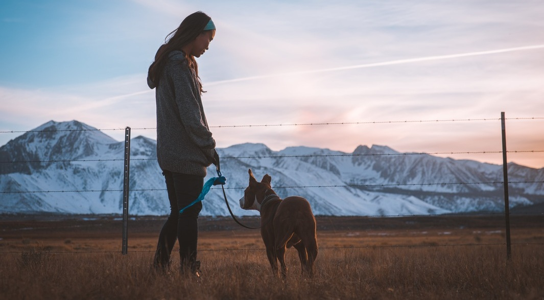 Feeling At Home As A Full-time Solo Global Traveler How to Be an International Petsitter Barbara Farfan