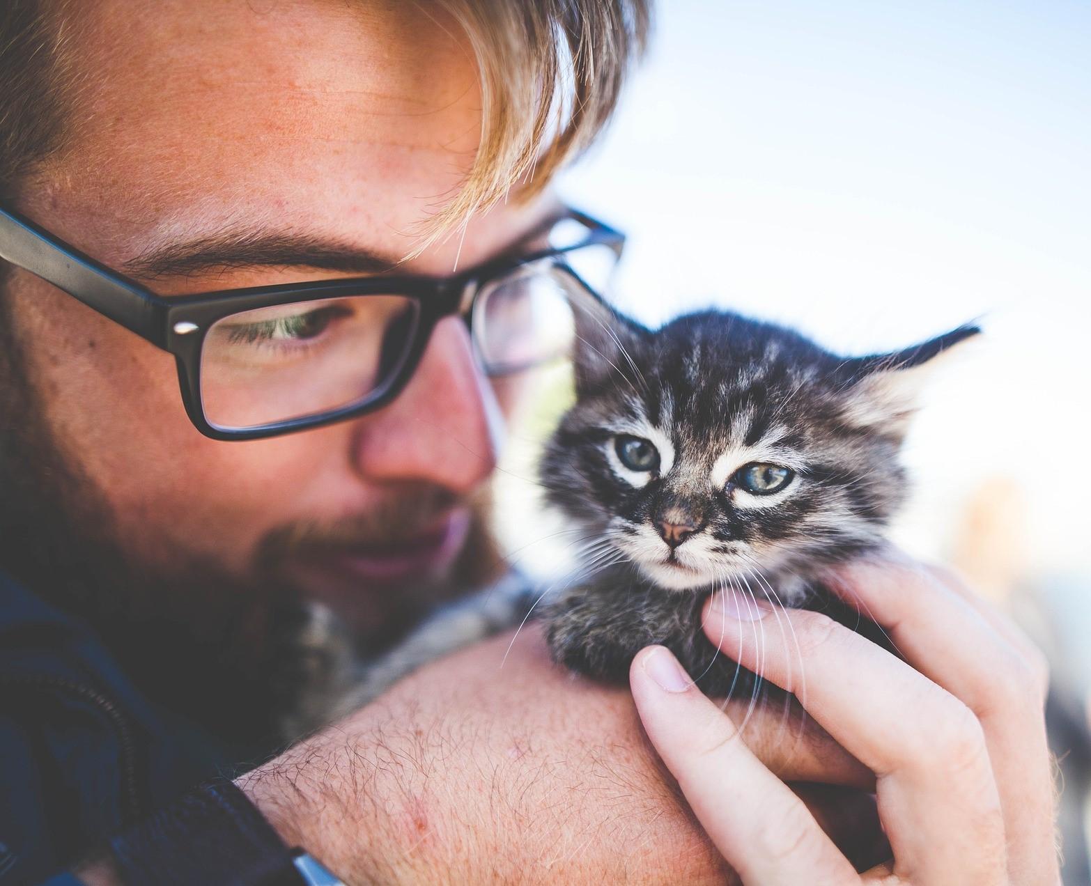 Petsitters Wanted: May 11, 2021 Petsitting Paid, Part-time & Permanent Job Postings