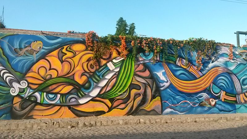 street art mural colonia santa julia charity fundraising events unesco heritage city san miguel de allende mexico life like a local